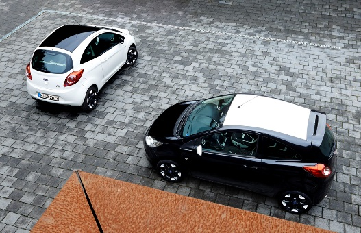 Black & White Ford Ka and Fiesta